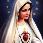 CD 135 - Chapelet avec Notre-Dame du Oui